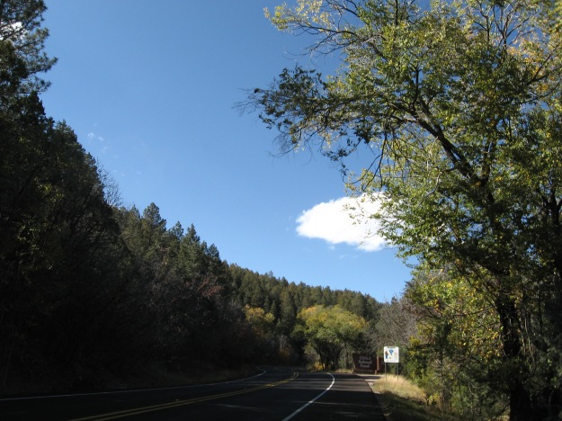 after a few turnoffs for residential side roads the climb enters National Forest