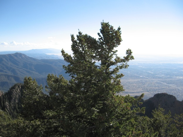 Albuquerque sits right next to the mountains.  Where we set our limits truly determines how we grow