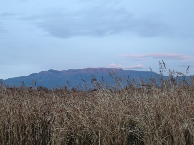 It was a cloudy evening but looking east from the fields the Sandias alighted momentarily at dusk