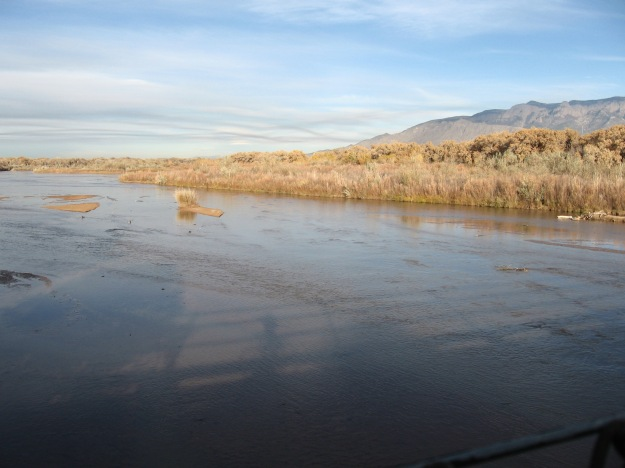 view from the old Alameda bridge over the Rio Grande