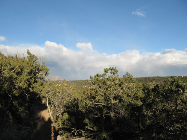 2014.11.24 Gutierrez Canyon 047
