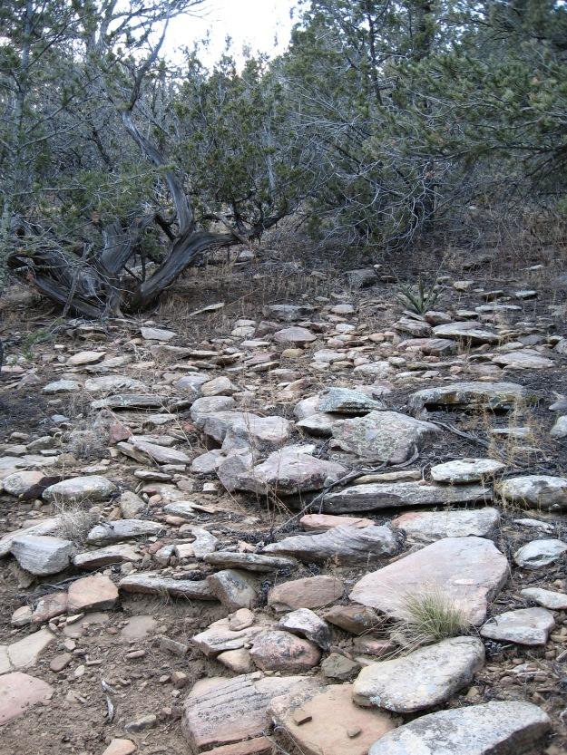 2014.11.24 Gutierrez Canyon 090