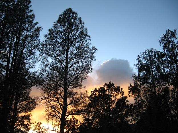 2014.11.24 Gutierrez Canyon 145