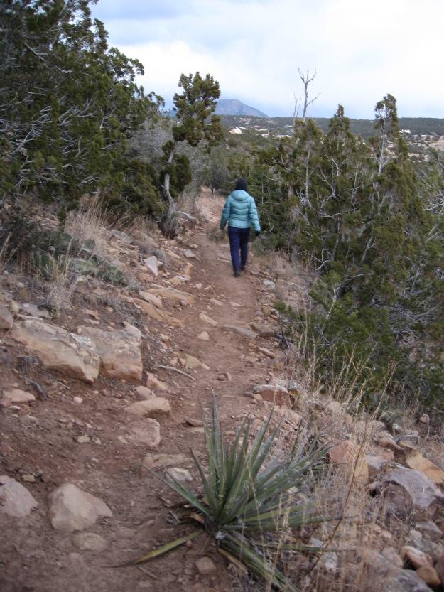 2014.11.24 Gutierrez Canyon 193