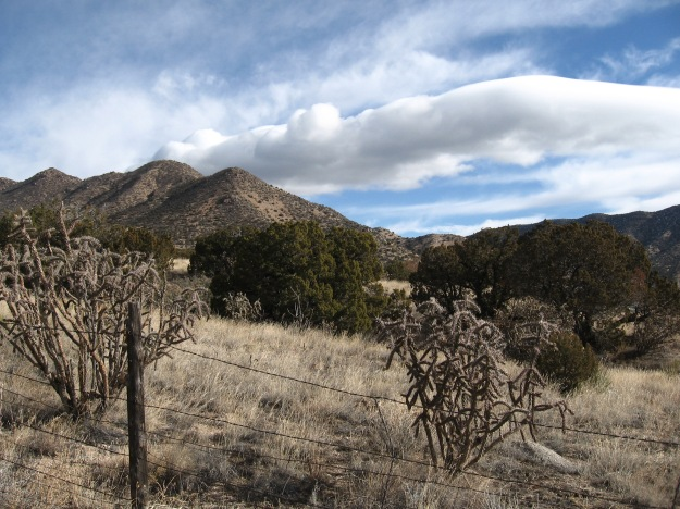 in Tijeras Canyon