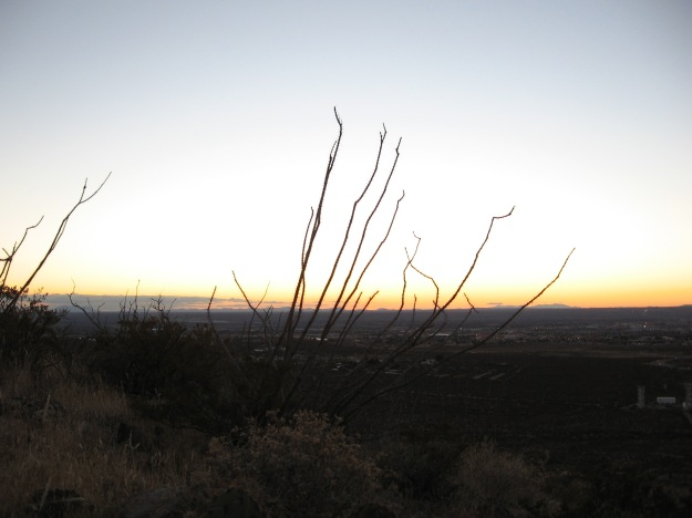 Orange glow at sunset looking West from Las Cruces