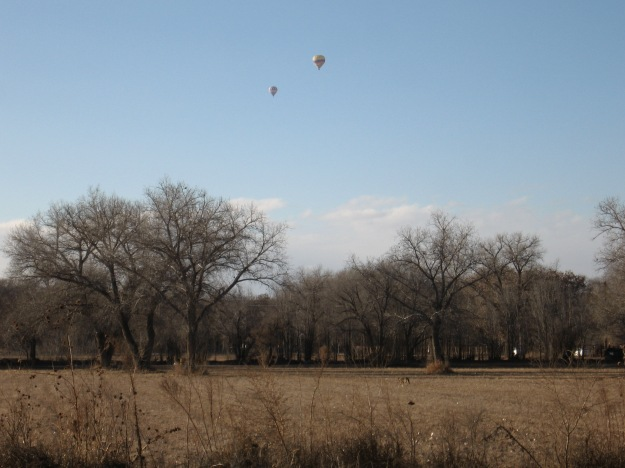 Two balloons took flight.  There is a coyote in the field in the foreground.  We saw three Coyotes.