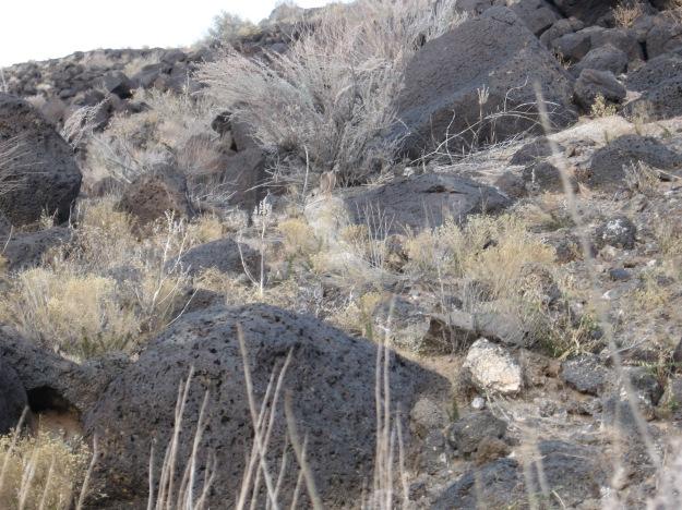 2015.1.12 Piedras Marcadas 212