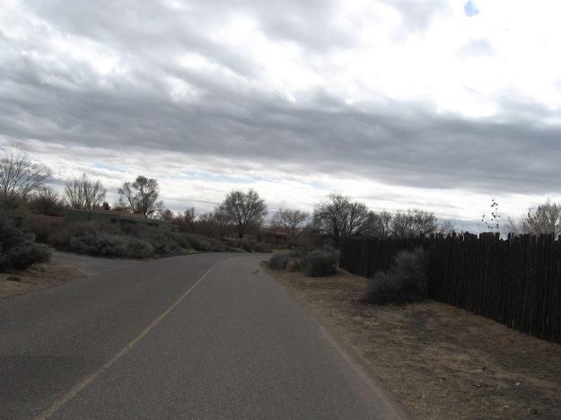 a roadrunner
