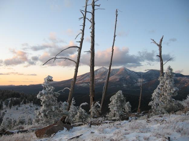 11.14.09 snowy Peaks 028