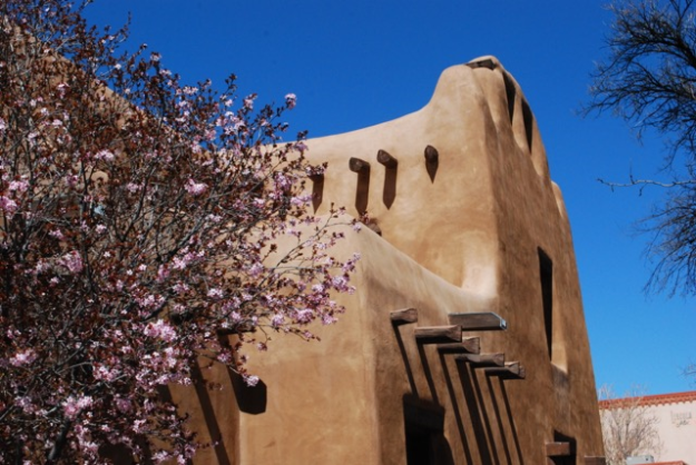 2015.3.28 Santa Fe architecture with cherry blossom