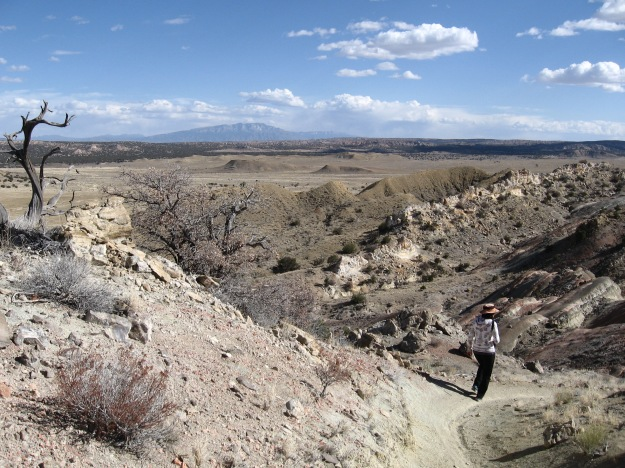 2016.3.9 White Mesa 203