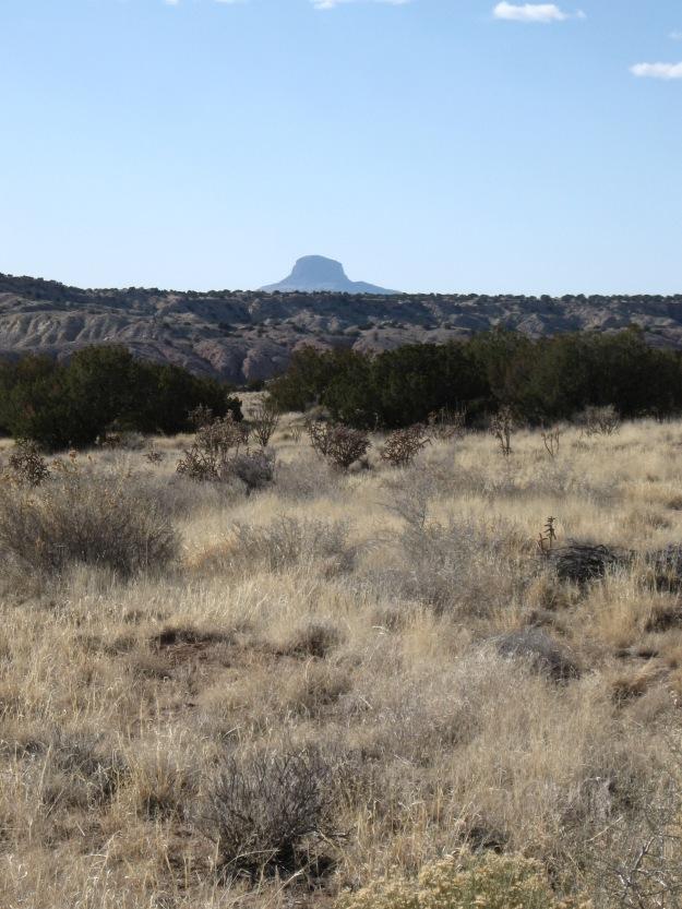 2016.3.9 White Mesa 242