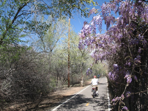 People bicycling on the Bosque