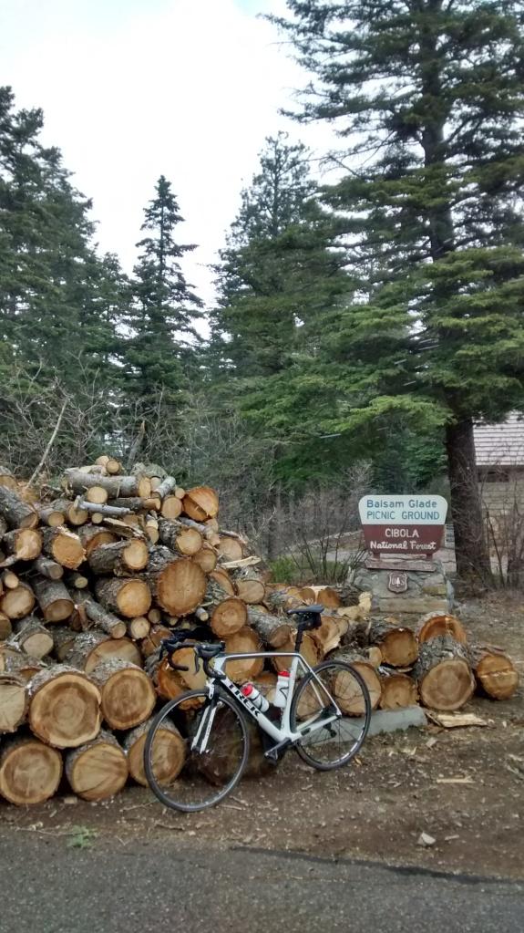2015.5.9 165 woodpile