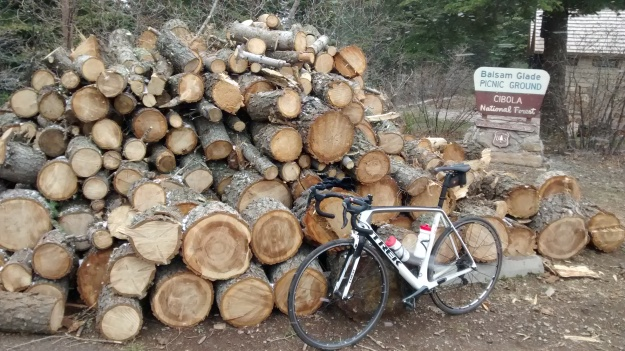 2015.5.9 bike in the woods