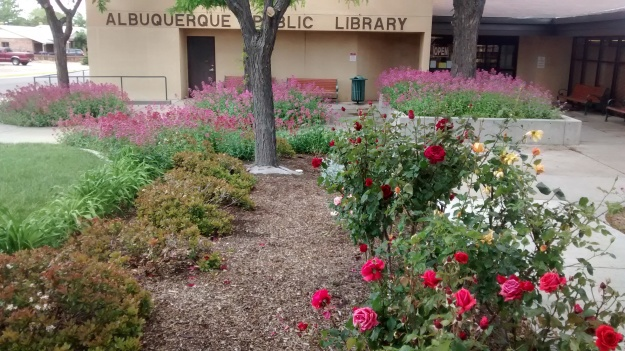 ABC Library Roses