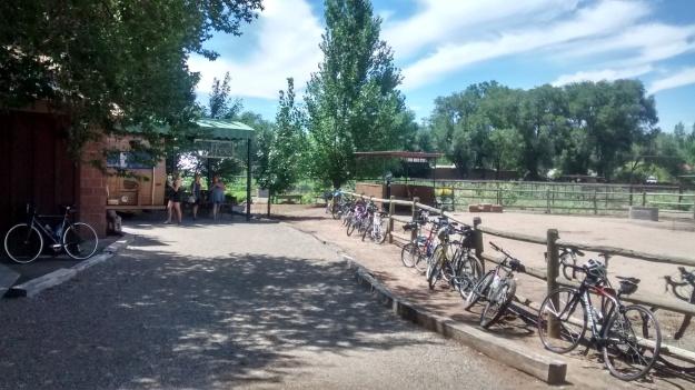 bike in coffee July 15