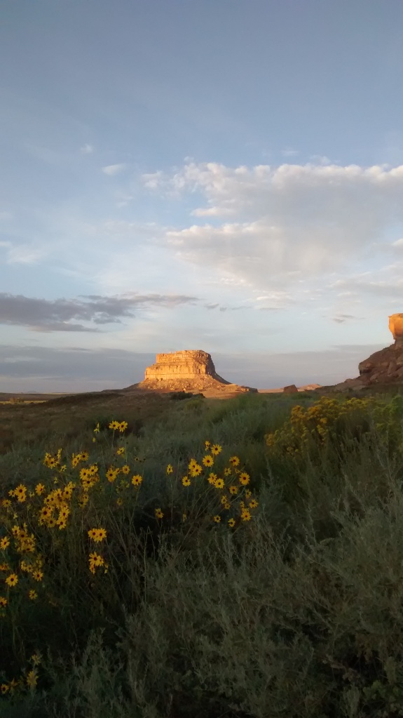 Fajada sunflower chamisa cliff light sky