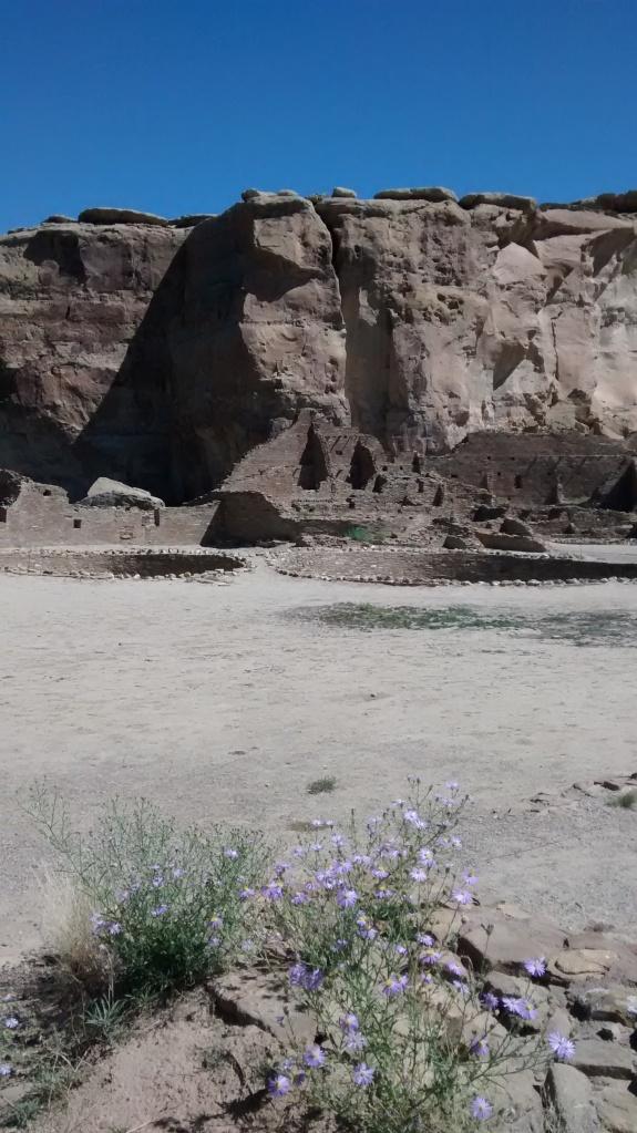 Pueblo Bonito field