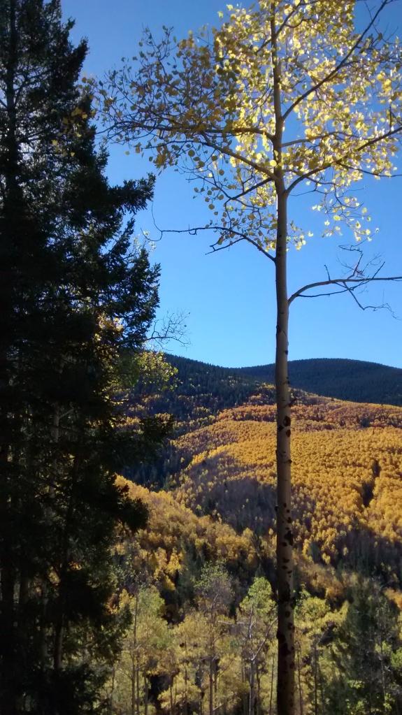 Aspen Vista light show