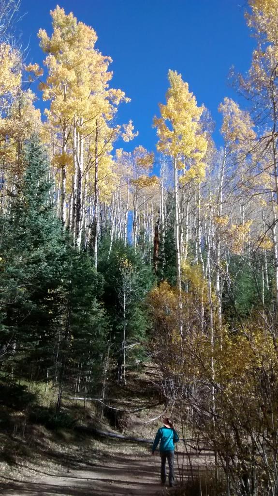 Aspen Vista Mai