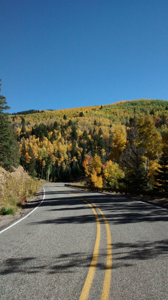 Aspen Vista road