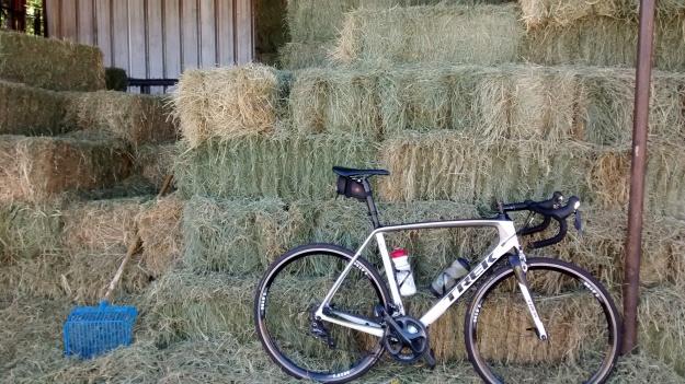 Hay and bike