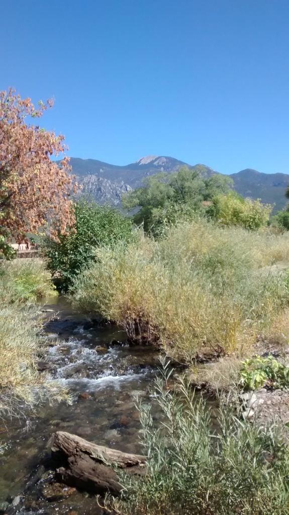 Taos willow creek