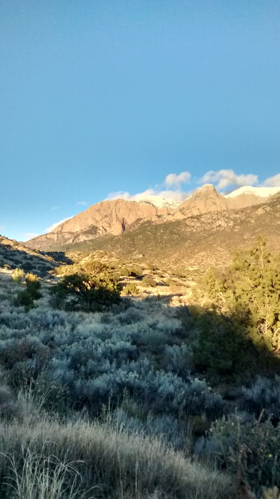 My evening ride up La Luz gave me a peak at the snow adorning the Sandia Crest