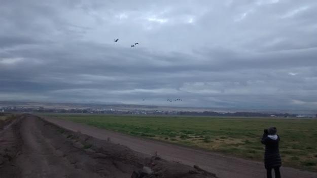 Valle de Oro photographing cranes