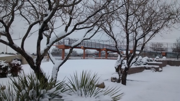 ABQ Los Altos Park bridge