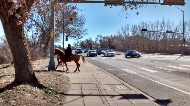 Bicycles, Pedestrians, and Horses
