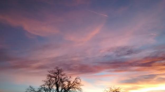 Grant Park sunset 12