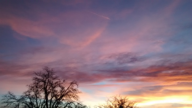 Grant Park sunset 8