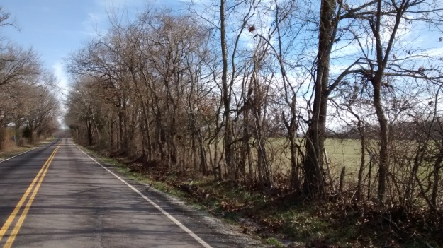 ARK Bella Vista country lane