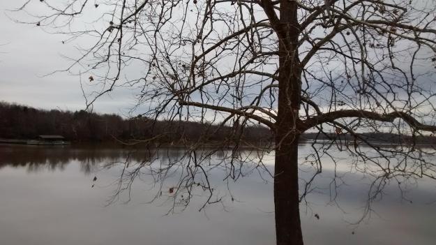 ARK Fayetteville Lake mirroring
