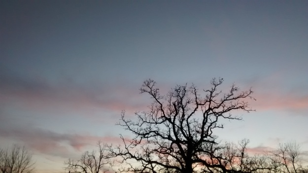 ARK Fayetteville sunset