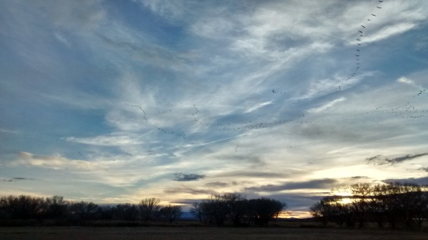 Bernardo sunset