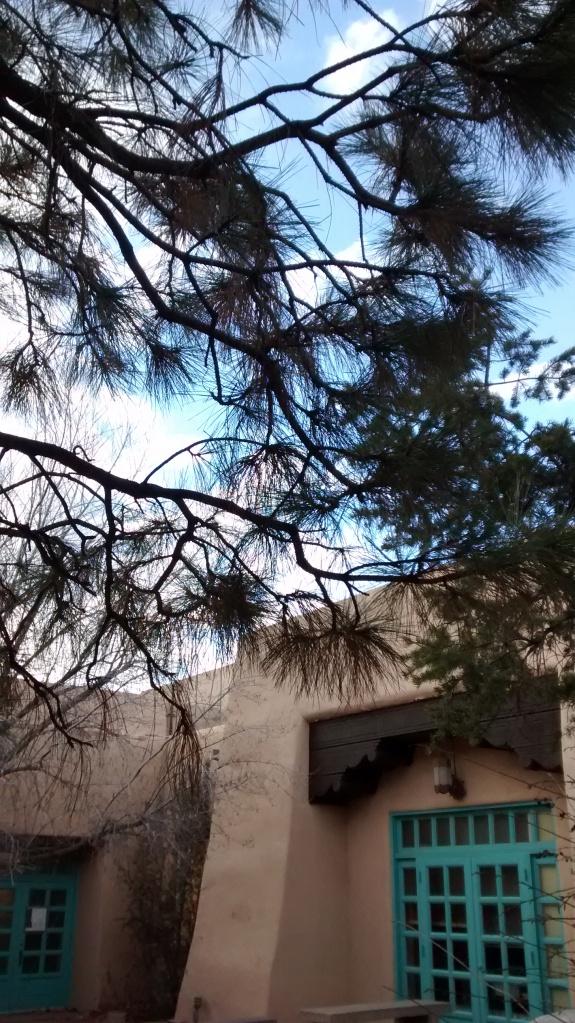 UNM turqoise courtyard
