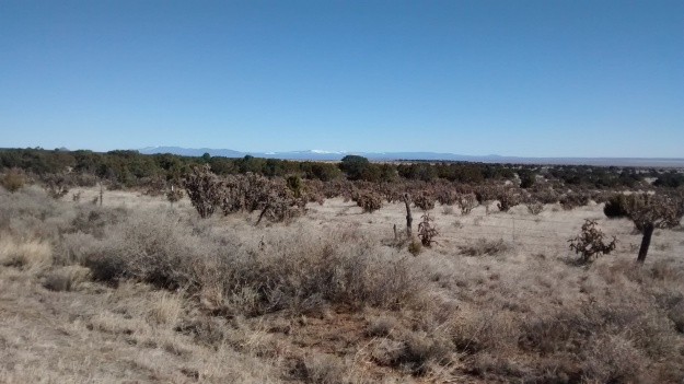 lookng to Pecos near Cedar Grove