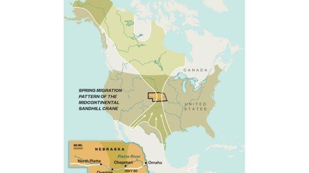 sandhill-cranes-map_jpg__800x450_q85_crop_upscale
