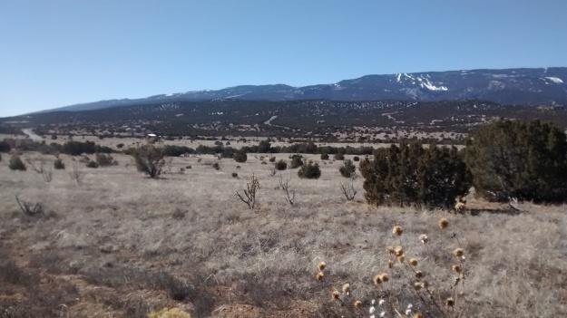 Sandia range from the eastside