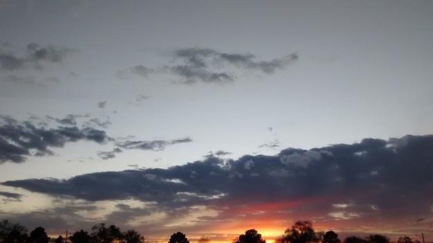 Albuquerque nights