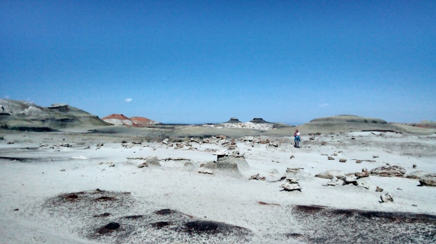 Mai in the Bisti scape