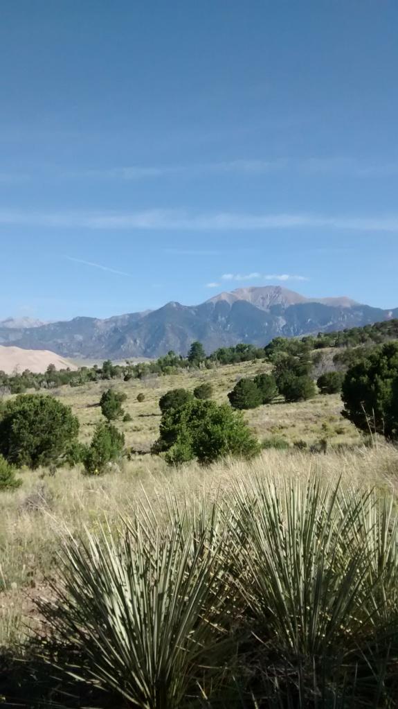 southwestern-diverse-habitat